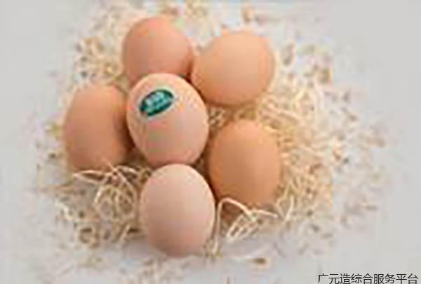 高山雪莲鸡蛋40枚